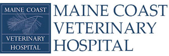 Maine Coast Veterinary Hospital